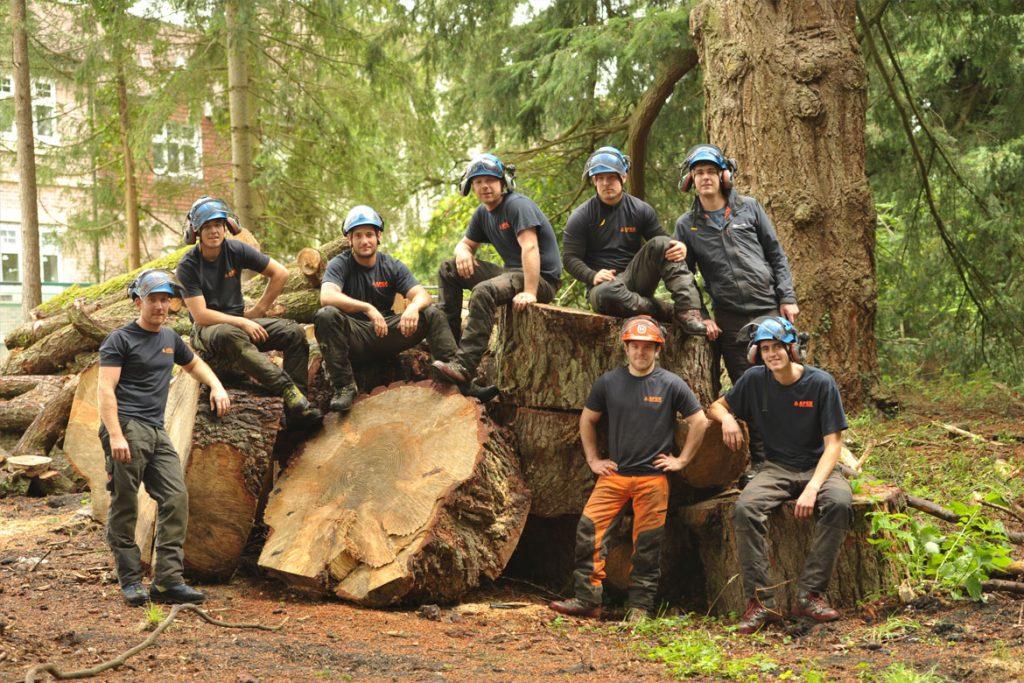 Apex-Tree-Surgeons-1_177