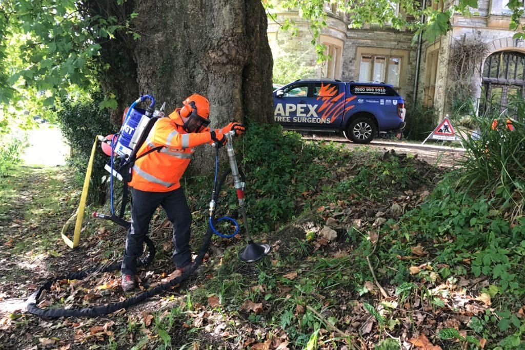 Apex-Tree-Surgeons-2_177