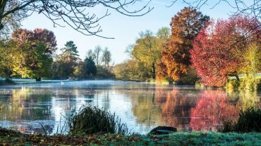Dazzling autumn colour walks with the National Trust in Hampshire