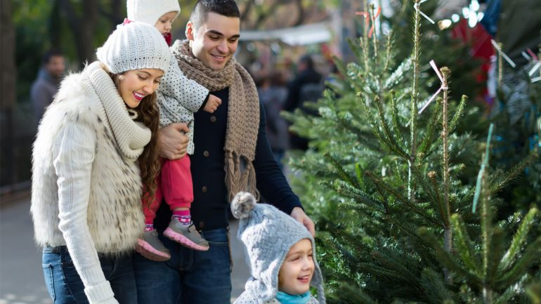 Why having a real Christmas tree is good for your health