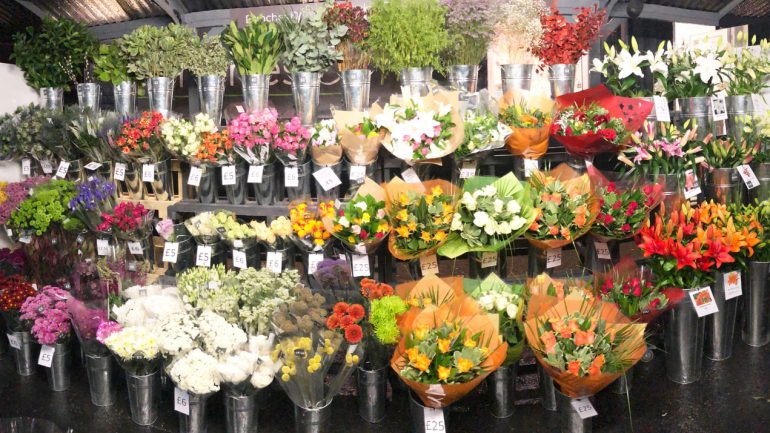Bunches of Westbourne